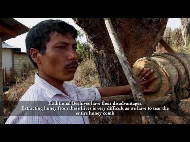 Documentaries & Videos