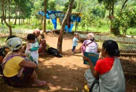 A case study of the community nursery under the SAHSNIANG CLF (west Jaintia hills)