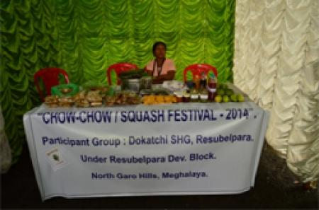 Squash (Piskot) Festival held in city image